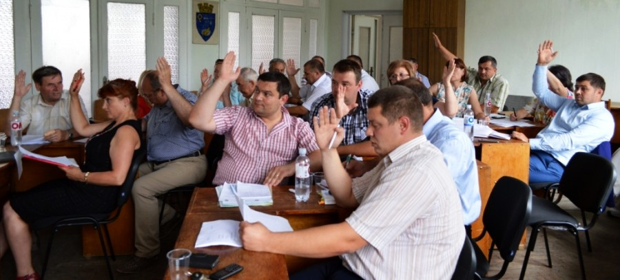 Au fost constituite comisiile consultative de specialitate ale noului consiliu